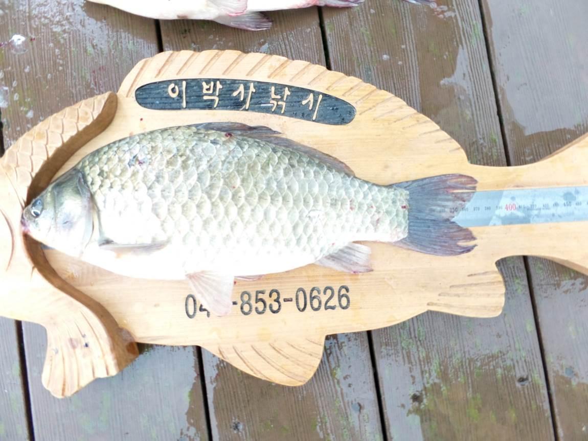 크기변환_013.JPG