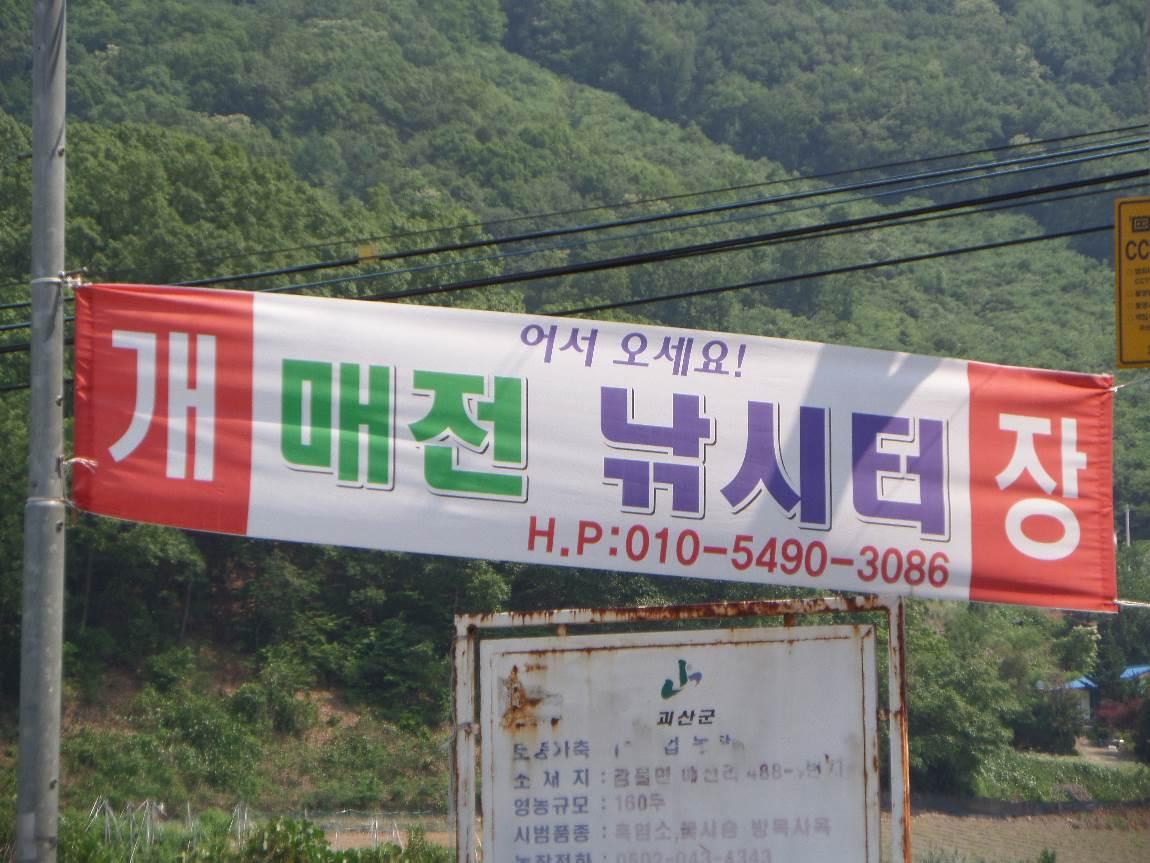 꾸미기_SAM_0631.JPG