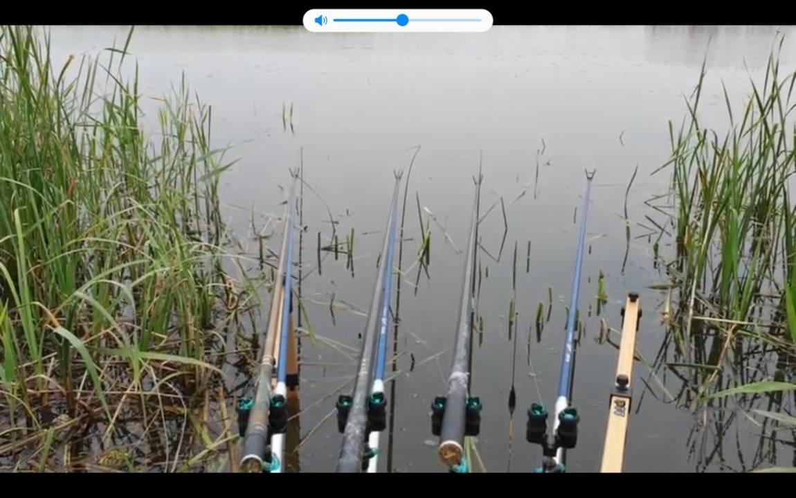 Screenshot_20200522-180531_YouTube_resized.jpg