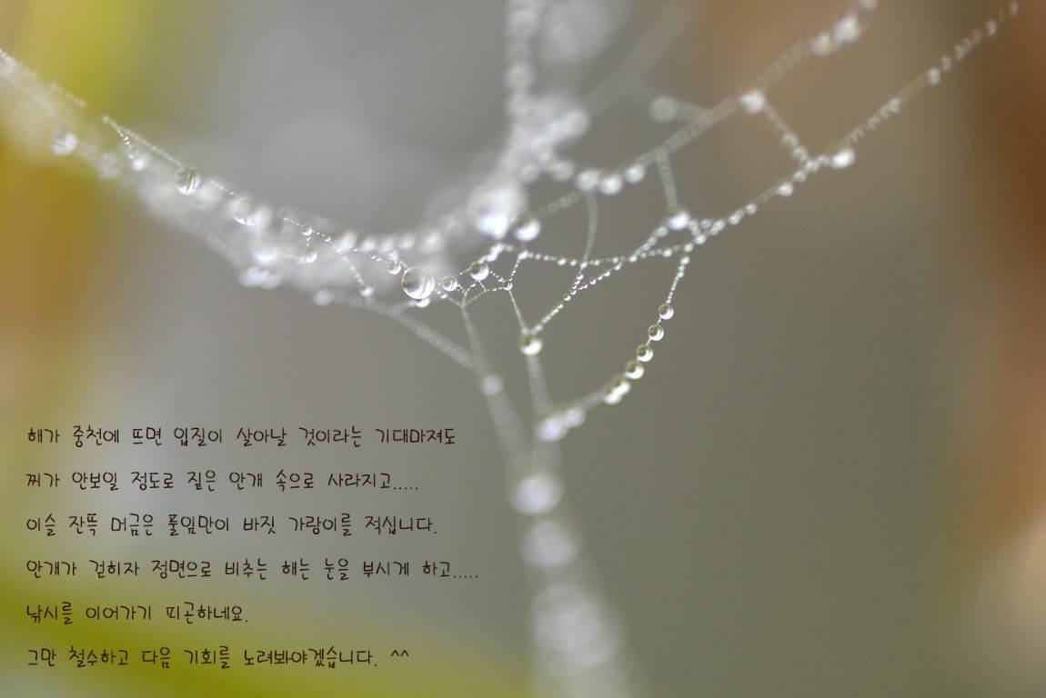 19C_5439-5397as.jpg