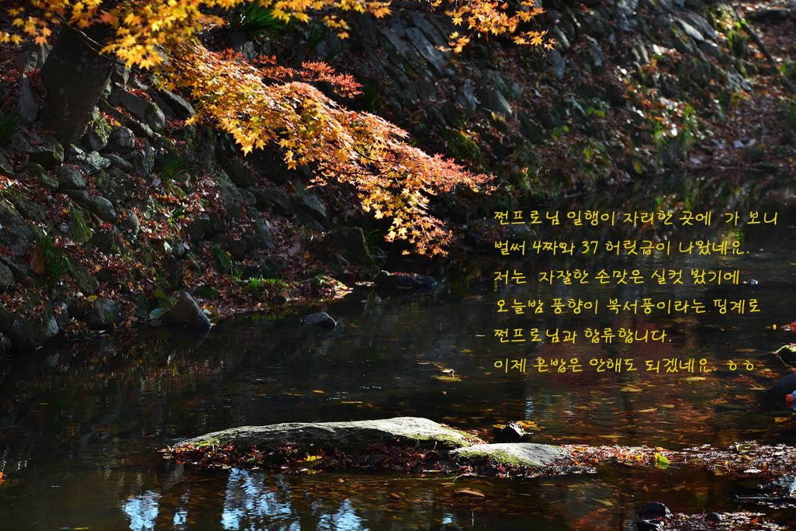 19C_5569-5861-2a.jpg