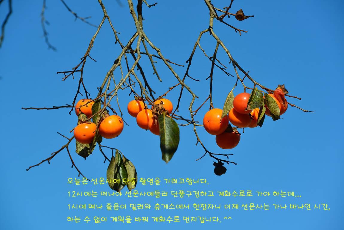 19C_5642-5811a.jpg
