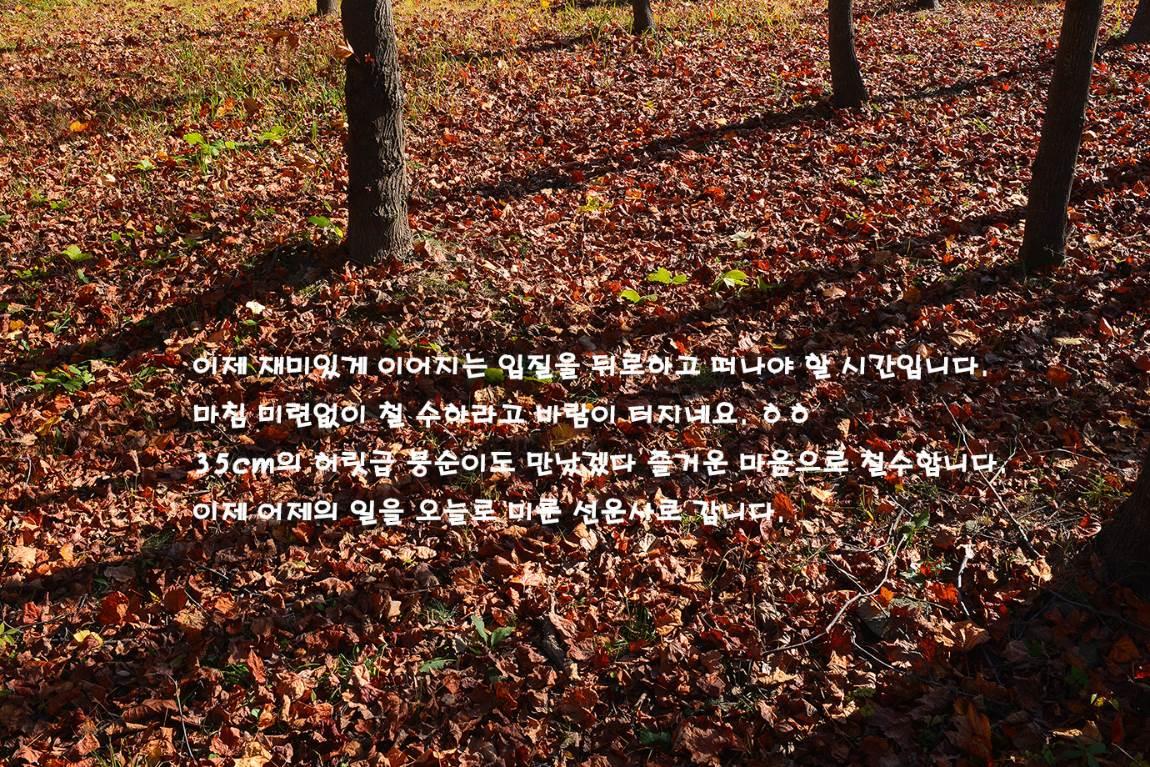 19C_5709-5730aa.jpg