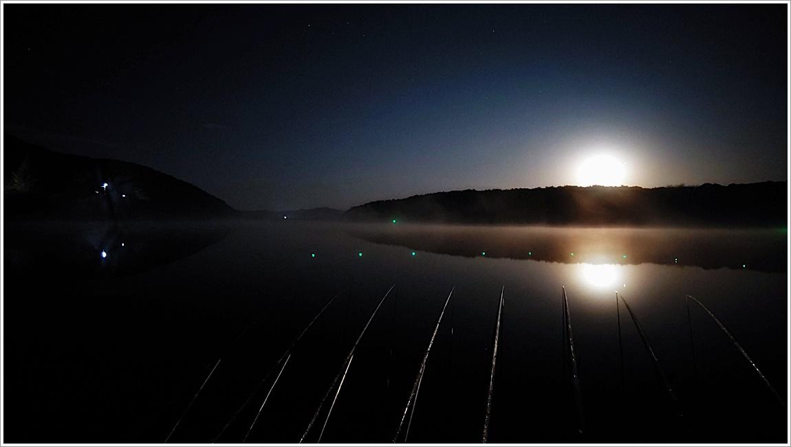 밤풍경 (2).jpg