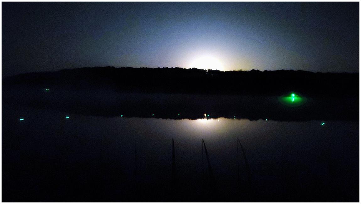 밤풍경 (7).jpg