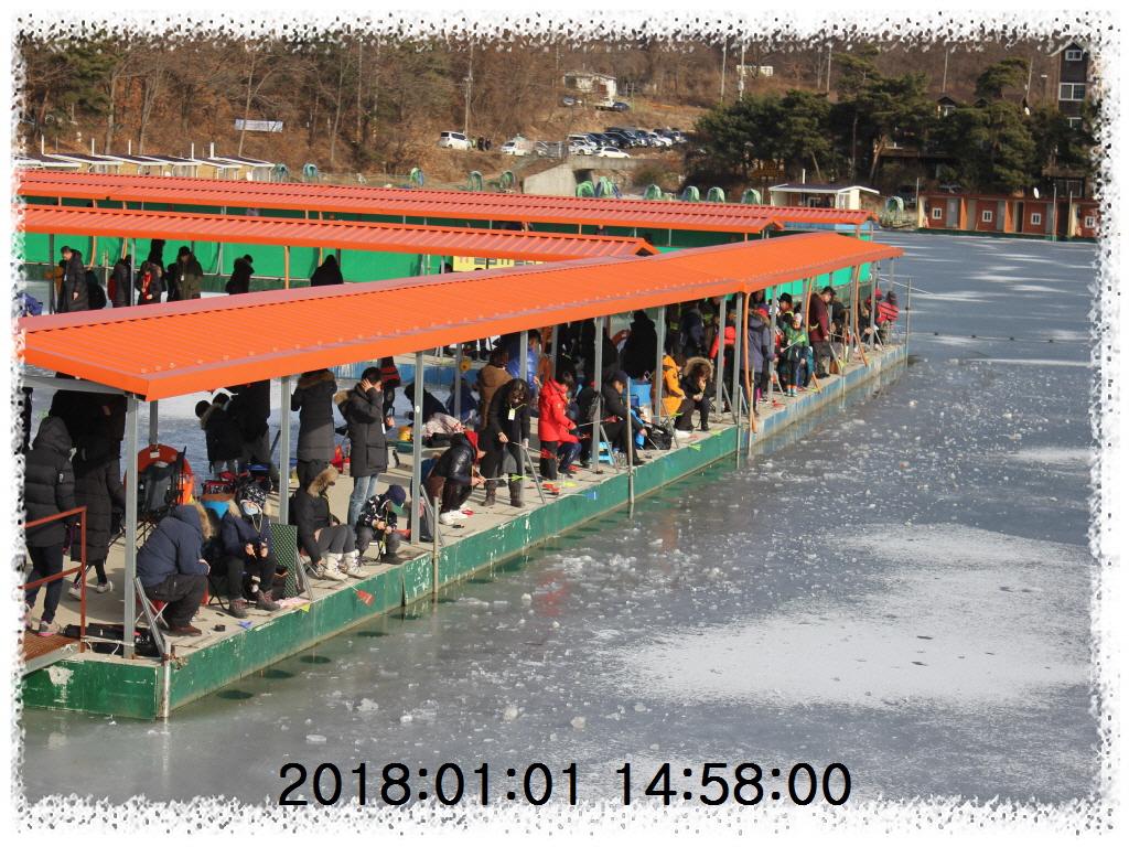 축제사진축제사진IMG_6894.JPG