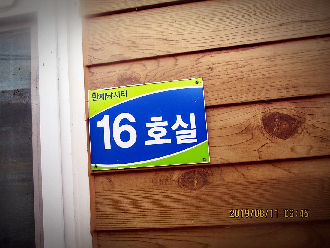 IMG_1131.JPG