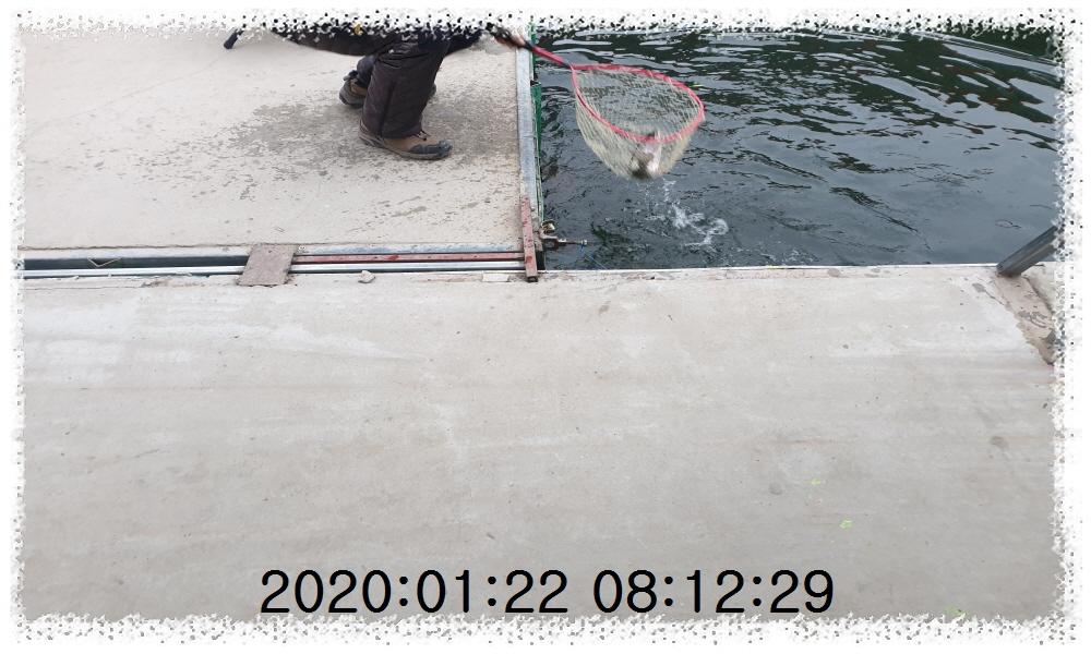 꾸미기20200122_081229.jpg