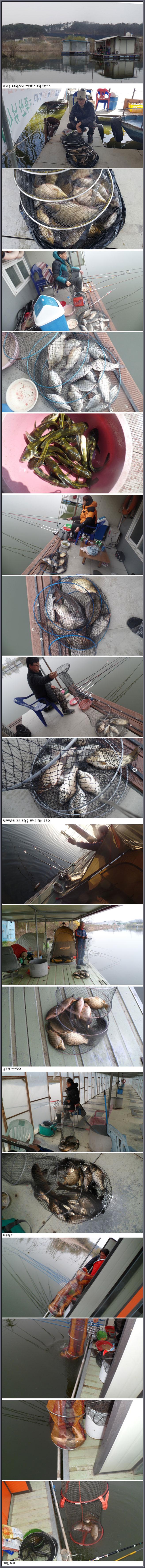 아산죽산지4/1일 화요일 각 포인트 조황 입니다