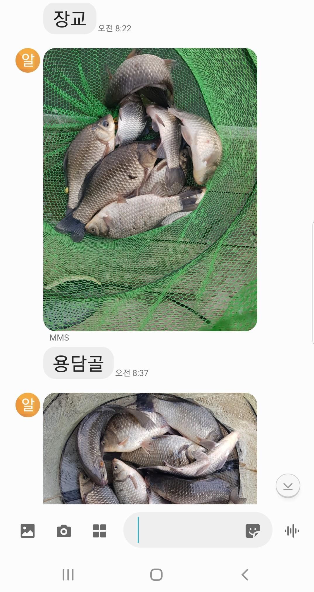 Screenshot_20210218-125255_Messages.jpg