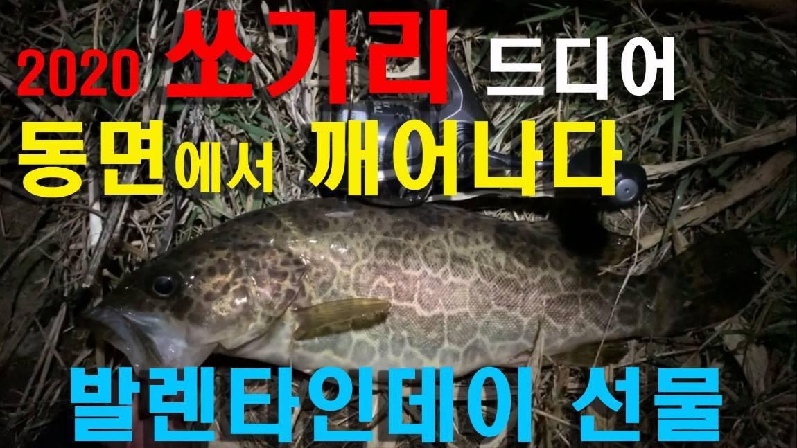 봄쏘가리_동면에서 깨어나다.jpg